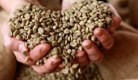 Header - Kaffee kochen