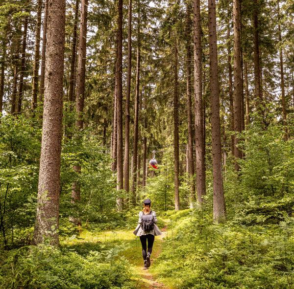 Frau wandert im Harz