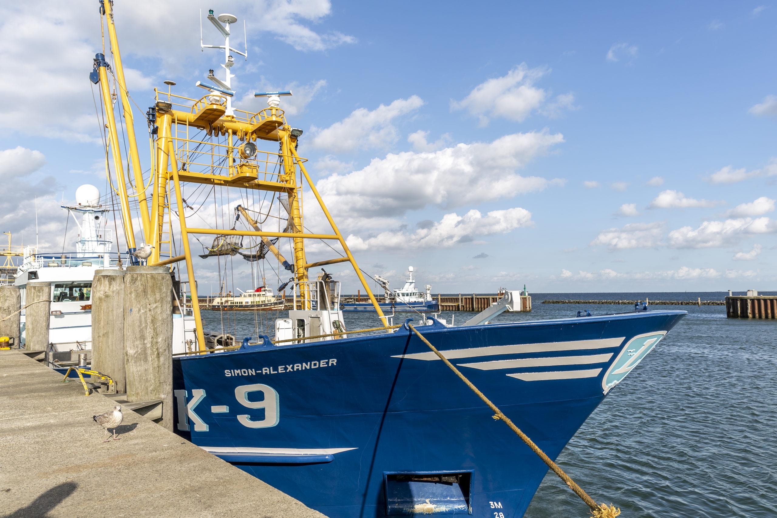 Boot für die Muschelernte