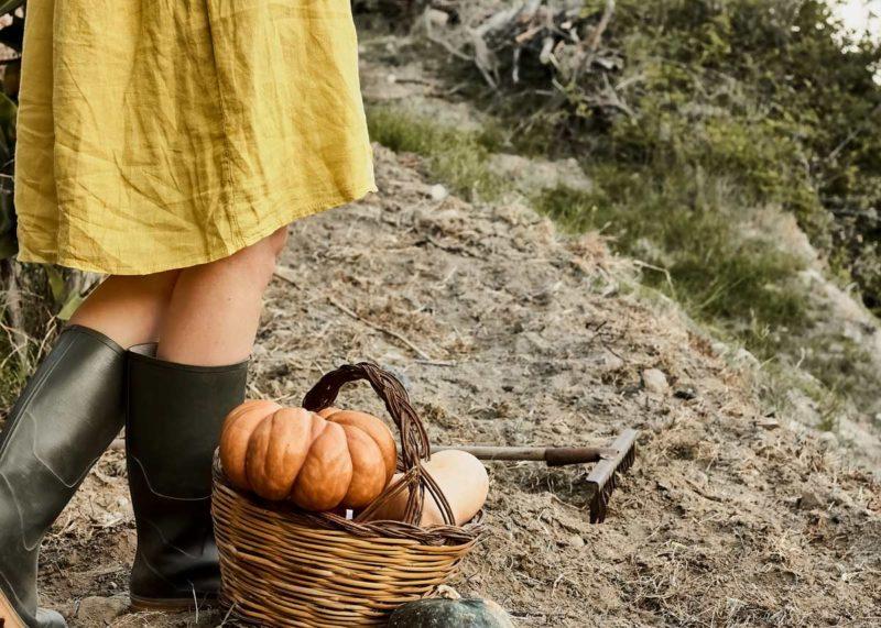 Frau in ländlichen Klamotten steht in einem Beet mit einem Korb voll Kürbisse Cottagecore