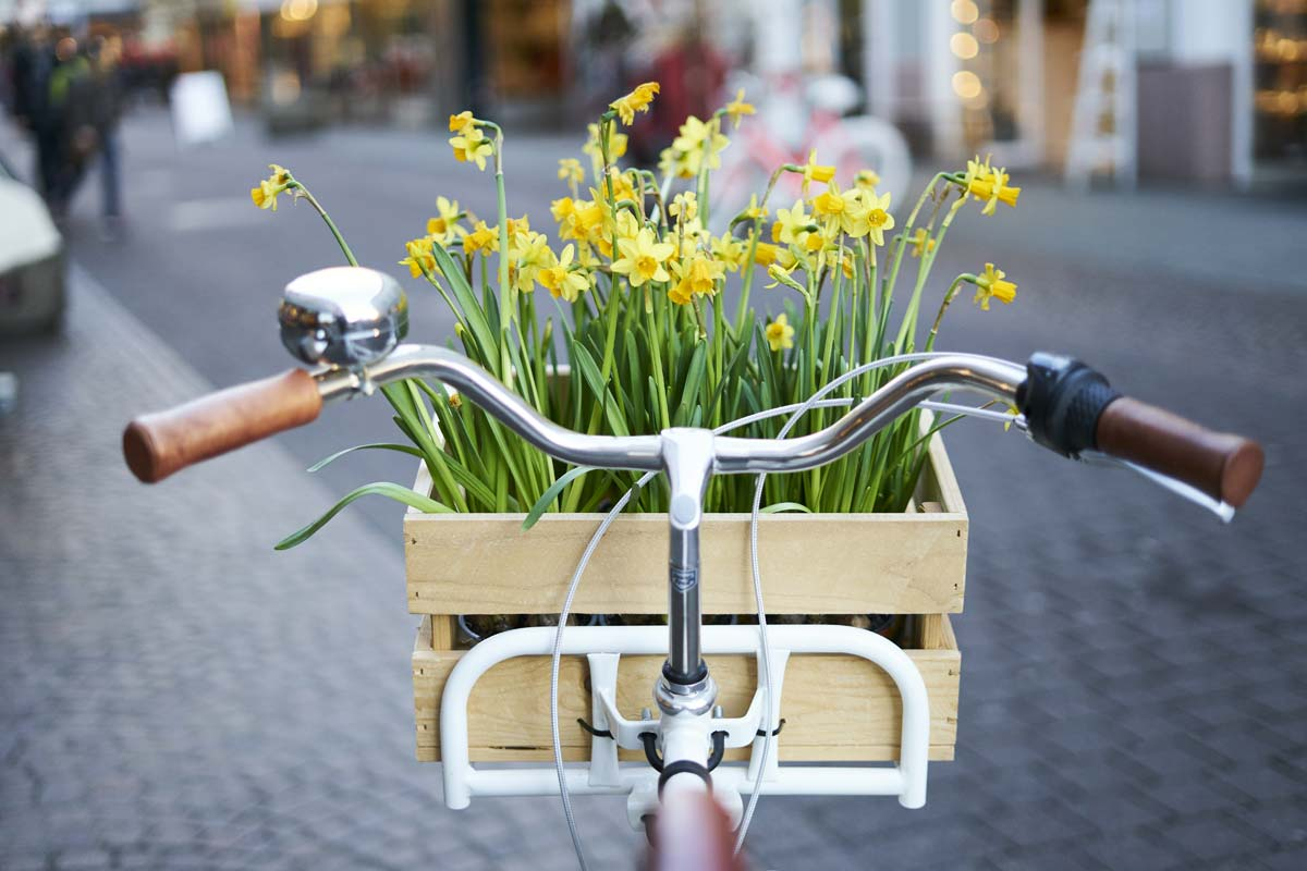 Fahttadlenker mit Frühlingsblumen