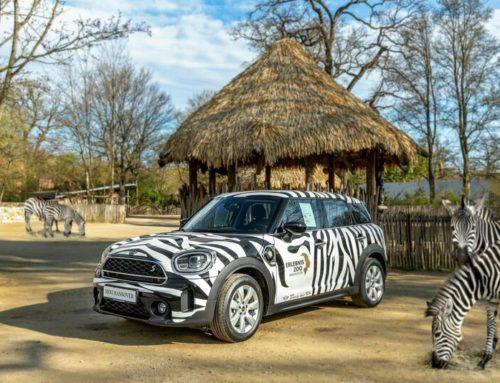 Auf zur Großstadt-Safari mit dem MINI Cooper Countryman